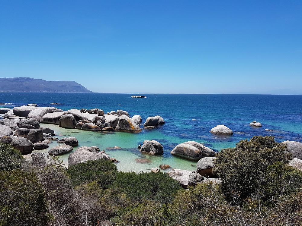 O que fazer na Cidade do Cabo na África do Sul Boulder's Beach praia dos pinguins (2)